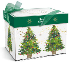 Holiday Magic Gift Pack View 2